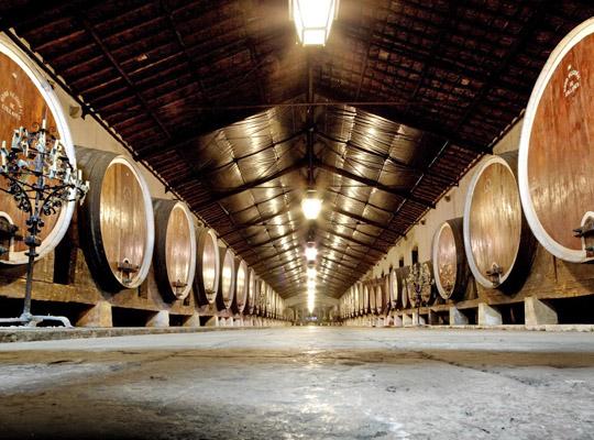 203 Vinho de Colares